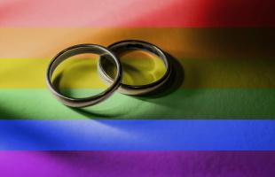 Diputados a favor del matrimonio igualitario