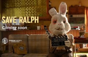Salva a Ralph: Video donde se muestra la realidad sobre la experimentación con animales por el bien de los productos para humanos