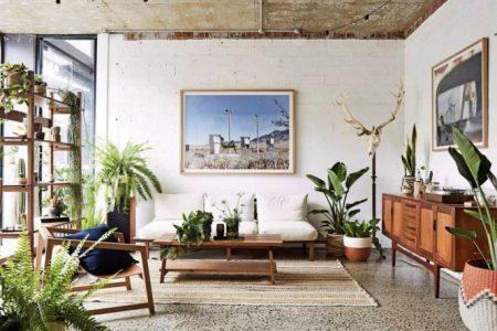 ¿Quieres crear un jardín en tu casa o tu depa? Acá te decimos cuáles plantas son fáciles de cuidar