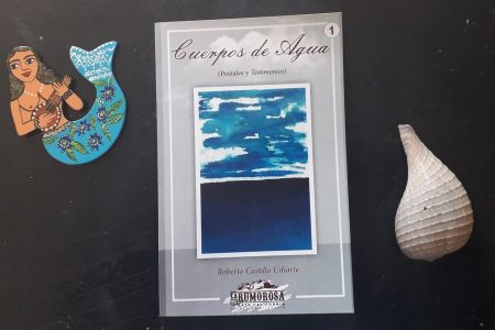Descarga el libro 'Cuerpos de agua' del poeta Roberto Castillo Udiarte
