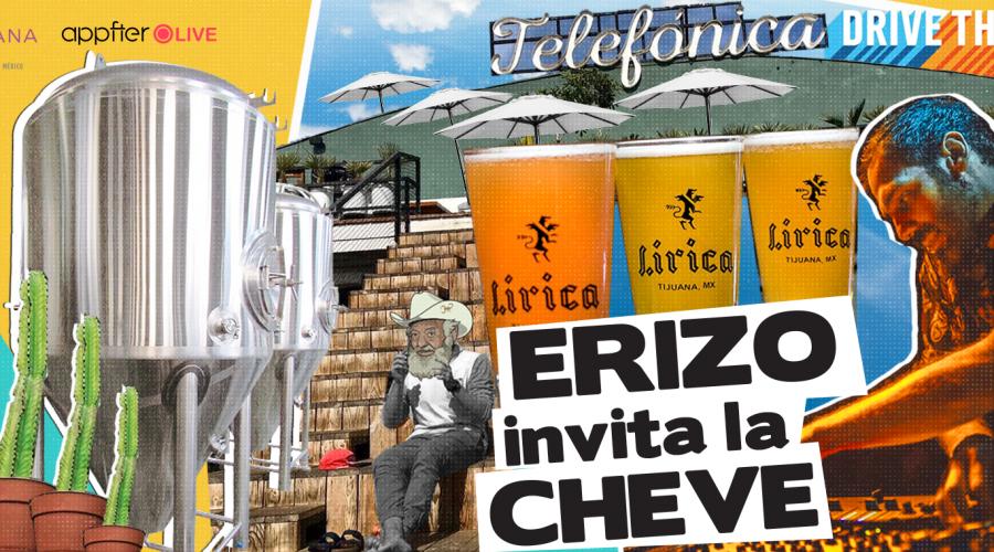 Erizo Media